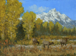 elk under tetons